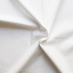 Plain dyed canvas cotton fabric - White